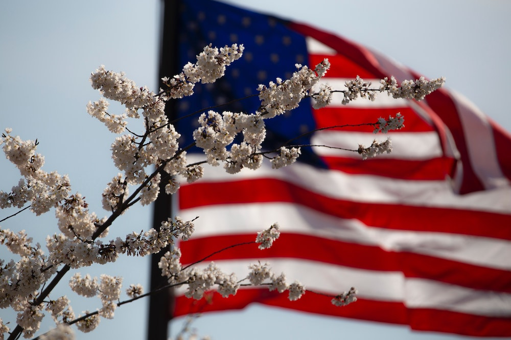 Memorial Day: Remembering & Honoring the Sacrifice | Blooms to Blossoms