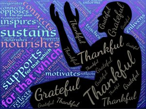 Be Thankful & Grateful; Be Aware & Appreciative | Blooms to Blossoms